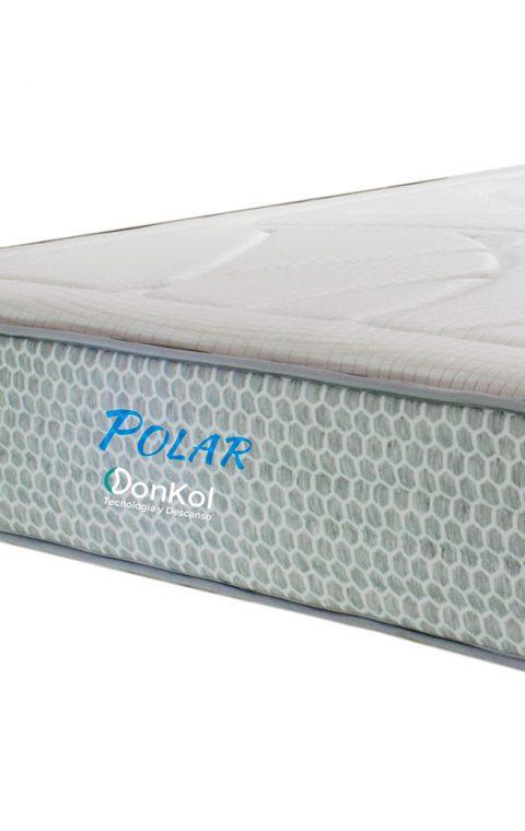 Polar Donkol REF-001